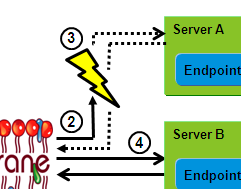Web Services Failover